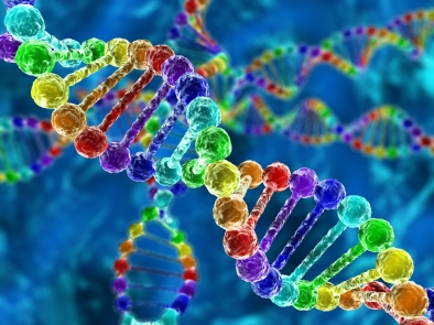 Rainbow DNA (deoxyribonucleic acid)